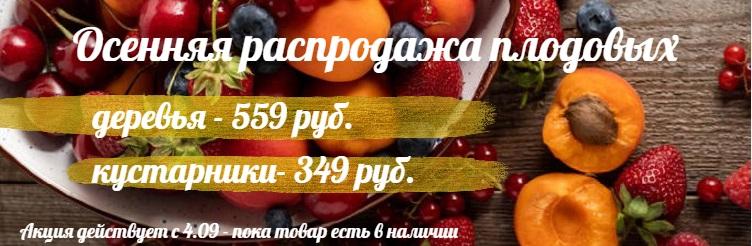 Скидки на плодовые