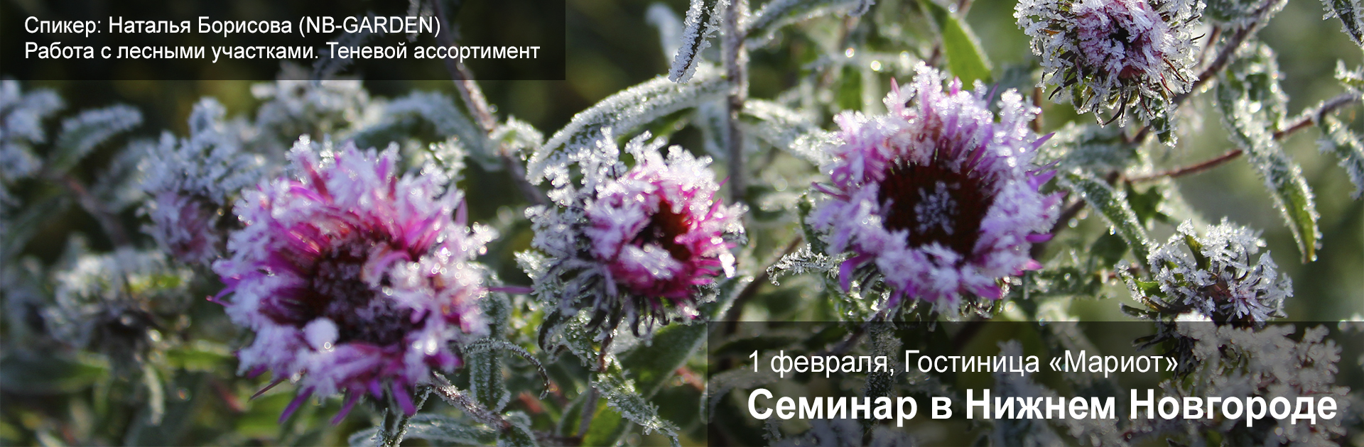 Семинар_февраль